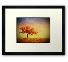 The Wednesday Tree Framed Print
