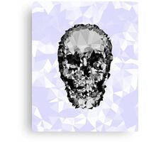 Shattered Skull Canvas Print