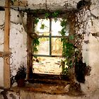 The Old Window by Pamela Jayne Smith