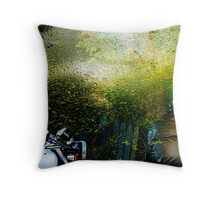 consumed by green.... road to patagonia Throw Pillow