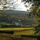 Vermont Pasture by Deborah Austin