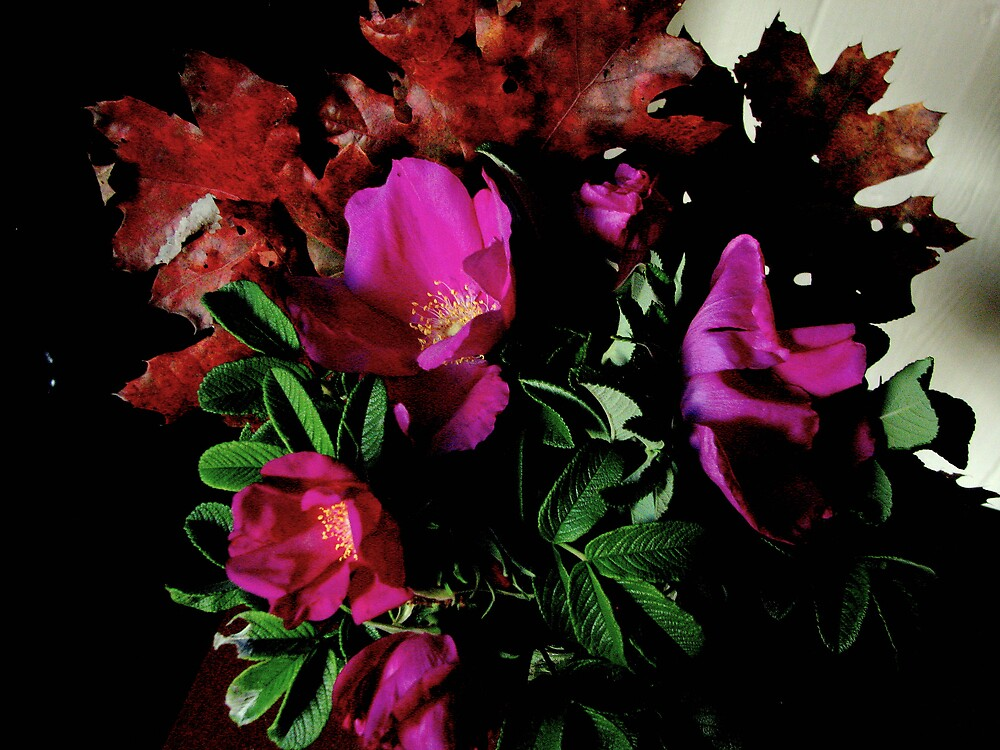 Autumn flowers, lightened version for Elf by Patty Gross