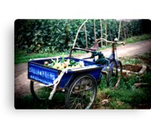 Blue Wagon in China Canvas Print