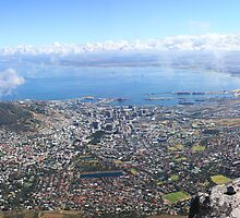 Cape Town from Table Mountain by Adrian Wells