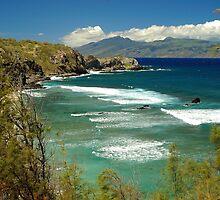 coast of Maui by fauselr