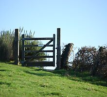 Lonely Gate by Claire Elford