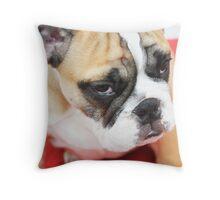 sad bad mood bulldog dog Throw Pillow