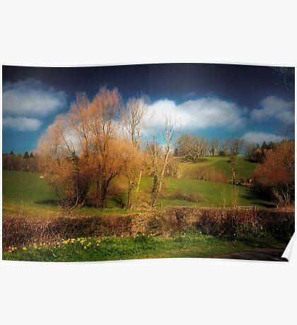 Landscape Alive Poster