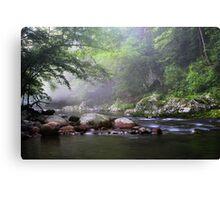 Tennessee Stream ~  Canvas Print