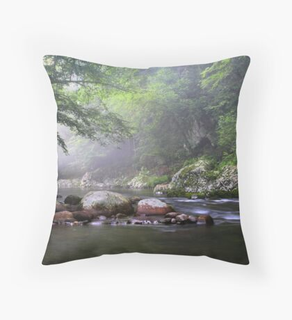 Tennessee Stream ~  Throw Pillow