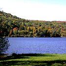 Echo Lake, west side......... by Brenda Dow