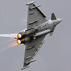 Typhoon by airwolfhound