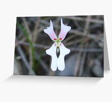 Trigger plant Greeting Card