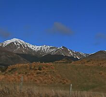 The Drive to Queenstown by Jennifer Nestler