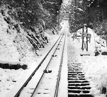 Railroad by Greenhorn