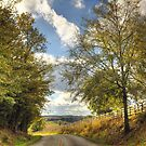 Country Road by Jonicool