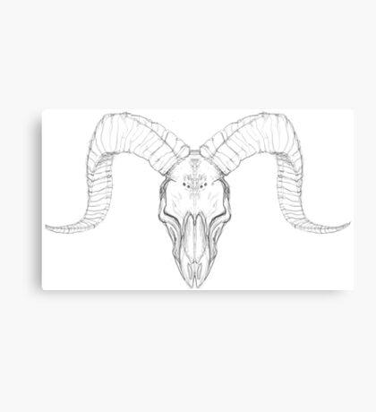 Ram Pencil Skull Canvas Print
