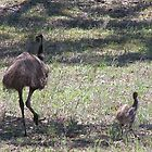 Emu Dad with Chick. by Rita Blom