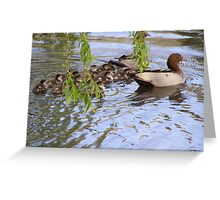 ME OH MY! WHAT A BROOD. Wood ducks & ducklings. Greeting Card