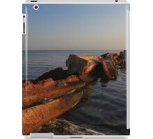a disaster left behind  iPad Case/Skin