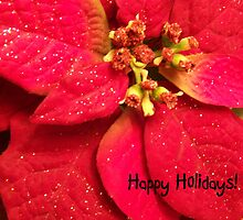 Happy Holidays by Debbie Meyers