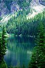 Pristine Alpine Lake by Tori Snow