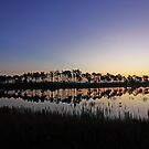reflections of the morning by kathy s gillentine