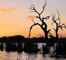 Sundown by Stephen Ruane