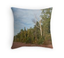 Birch and Pine Throw Pillow