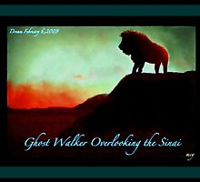 A Gathering Storm:  Ghost Walker in the Sinai (2 of 5) by mcyoung