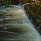 Comanche Creek by Mark Anthony Carter