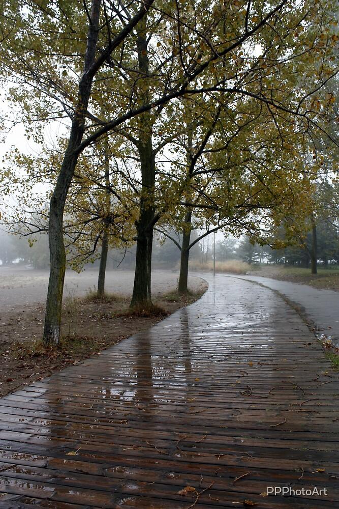 Rainy Boardwalk by PPPhotoArt