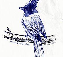 Asian Paradise Flycatcher by Ashley Dadoun