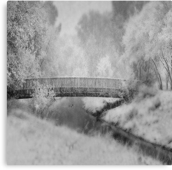 A Winter's dream by Angela King-Jones