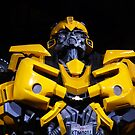 BumbleBee by nfsnyc