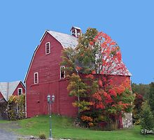 Red Barn in the Fall by Pam Moore