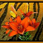 Tiger Lily by Elaine Game