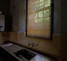 Empty - Tarban Creek Lunatic Asylum - The HDR Experience by Philip Johnson