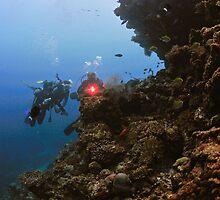 Reef Scene by Aziz T. Saltik