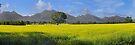 Victoria Valley by mspfoto