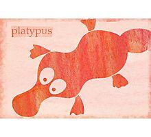 Platypus Photographic Print