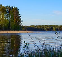 tranquillity by vdell