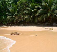 The Beach by Walter Quirtmair