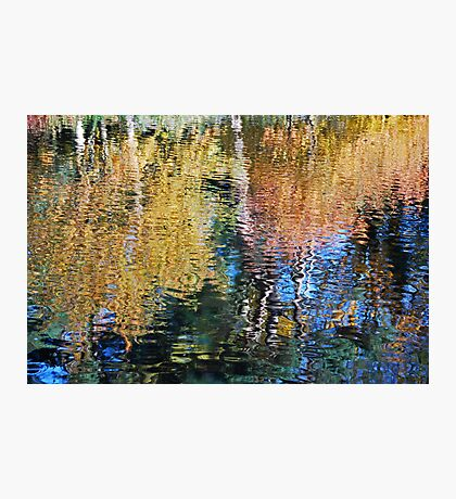 world of colour Photographic Print