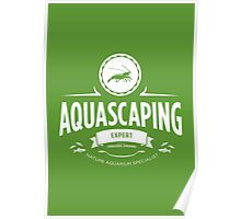 Aquascaping - Expert Poster