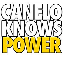 Saul 'Canelo' Alvarez - Canelo Knows Power by liam175