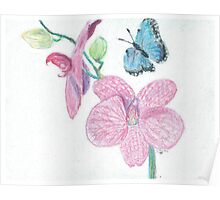 pink orchid -oilpastels Poster