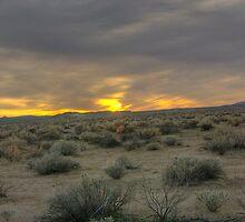 Death Valley  Evening desert by gdedalmas