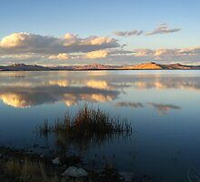 Bear River Reflective Granduer by Bellavista2