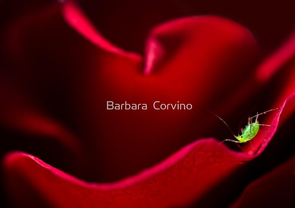 A green dot by Barbara  Corvino